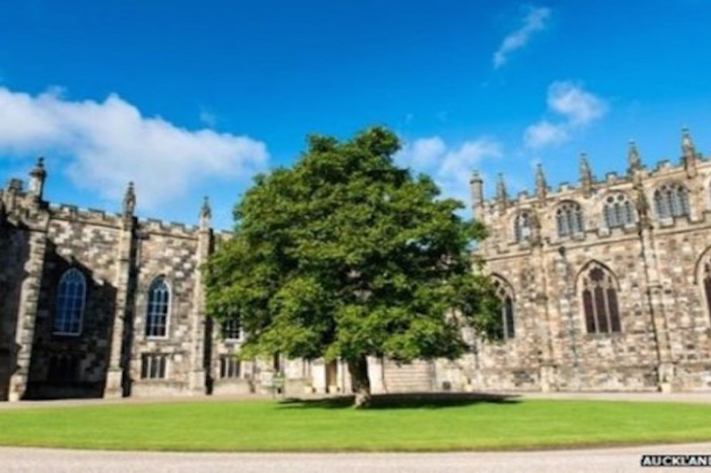 Auckland Castle awarded £9m